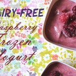 Dairy-Free Raspberry Frozen Yogurt
