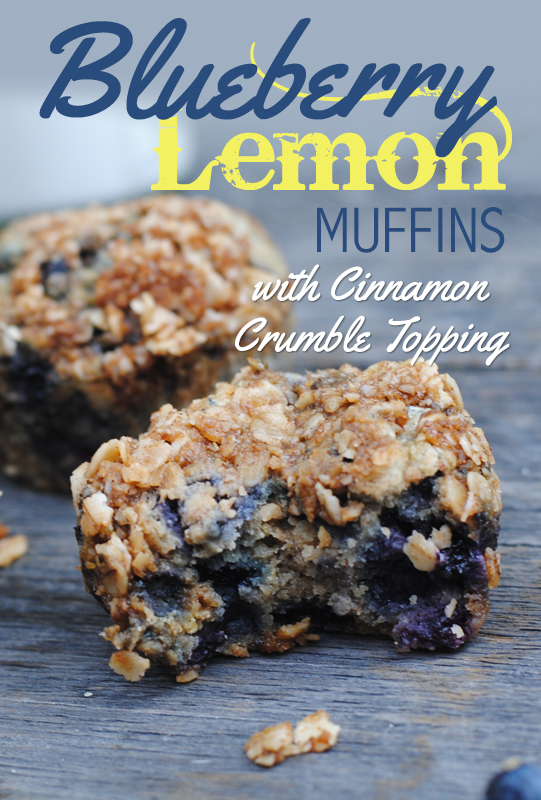 Blueberry Lemon Muffins with Cinnamon Crumble Topping from She Let Them Eat Cake